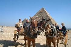 Cheops Pyramide in El Giza. Reisegruppe mit Kalesch (Kutsche)
